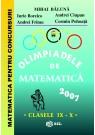 Olimpiade de matematica cls. IX-X 2007